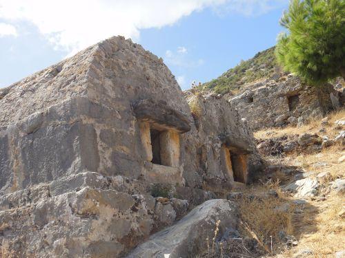 гробницы анемуриум anemurium