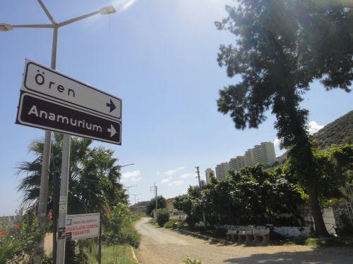 дорога в анемуриум anemurium