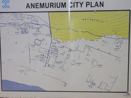 план анемуриума