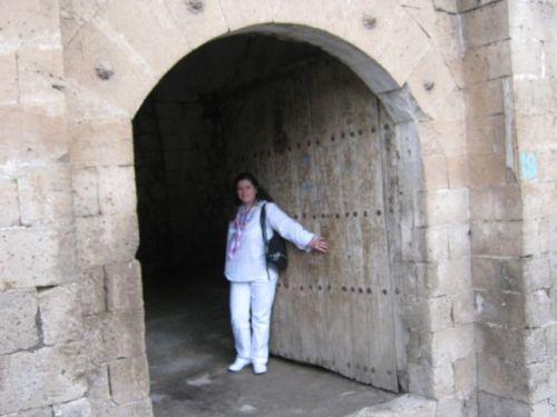 Савур дверь в особняк