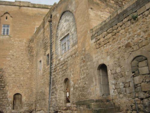 савур во дворе старинного дома