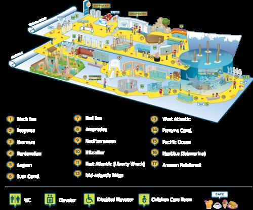 план истанбул аквариум