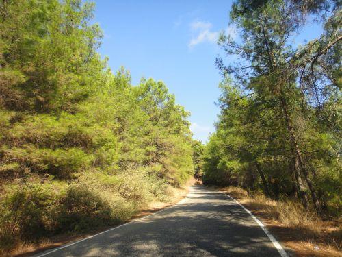 дорога в Фазелис